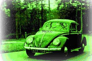 La Ruta Verde